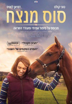 סוס מנצח